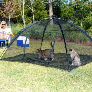 Safe outdoor cat repellent